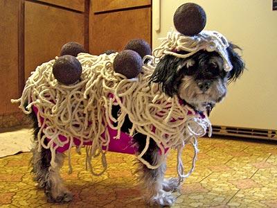 Top 10 Cutest Food Halloween Costumes
