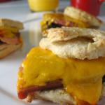 sandwichupclose_500