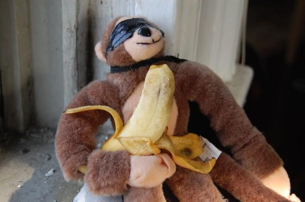 monkey-1-600-x-398