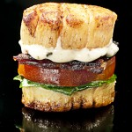 Scallop-BLT-V1--2010-Jonathan-Meter
