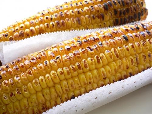 food-corn-maze-1621099-l