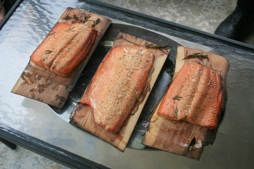 salmon-fish-wood-625980-l