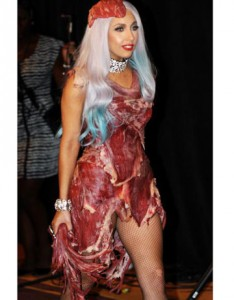 lady-gaga-meat-dress-lg