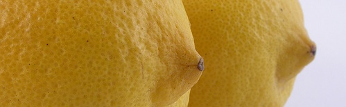 lemon tits