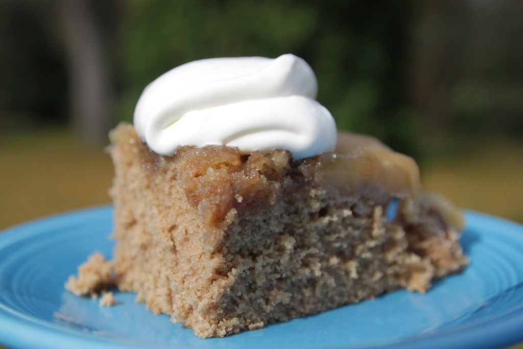 AppleCiderUpsideDownCake