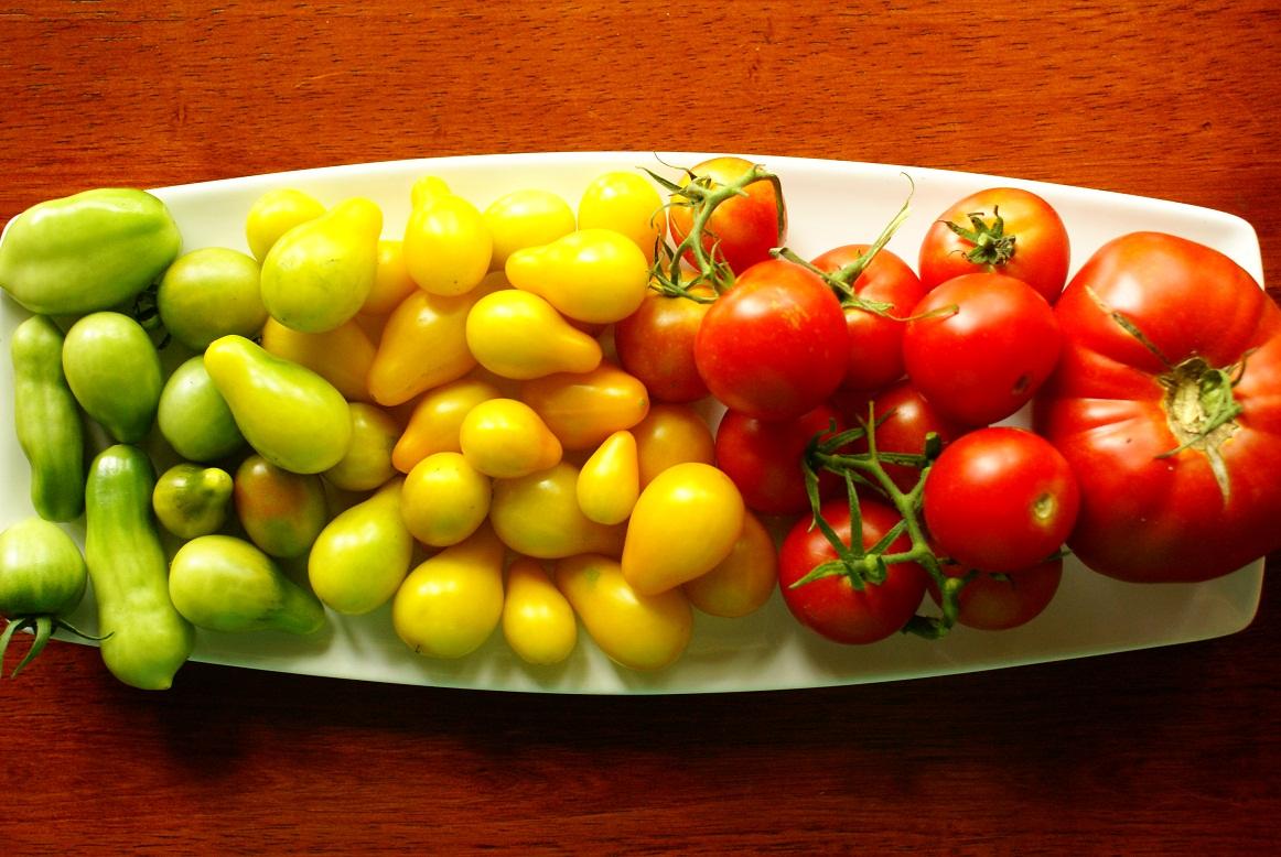 Tomato Spectrum
