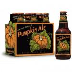 BuffaloBillsPumpkin-500x500